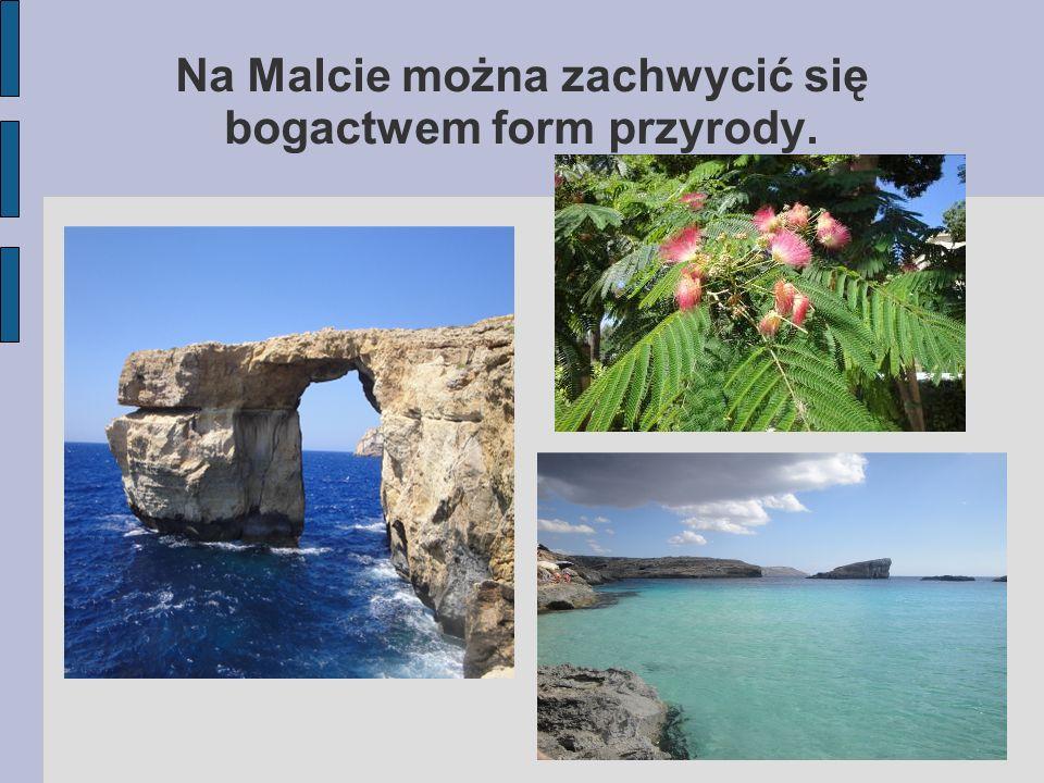 Na Malcie można zachwycić się bogactwem form przyrody.