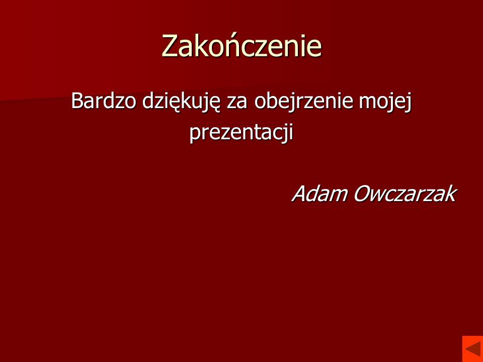 Zakończenie Bardzo dziękuję za obejrzenie mojej prezentacji Adam Owczarzak