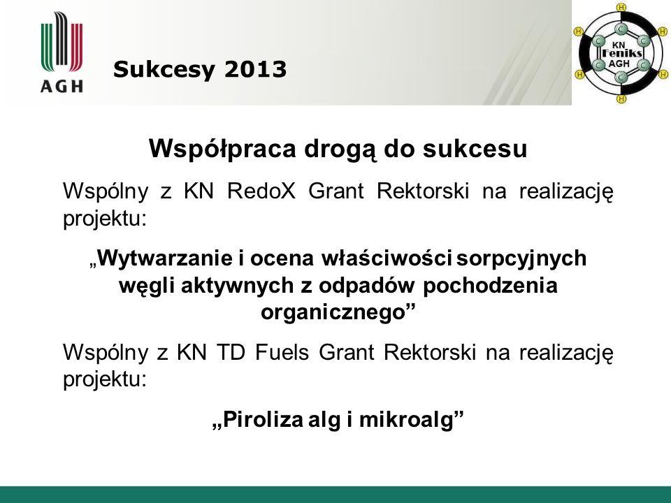 Sukcesy 2013 Współpraca drogą do sukcesu Wspólny z KN RedoX Grant Rektorski na realizację projektu: Wytwarzanie i ocena właściwości sorpcyjnych węgli