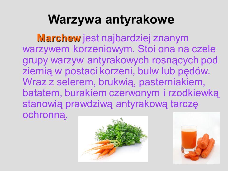 Marchew Marchew jest najbardziej znanym warzywem korzeniowym. Stoi ona na czele grupy warzyw antyrakowych rosnących pod ziemią w postaci korzeni, bulw