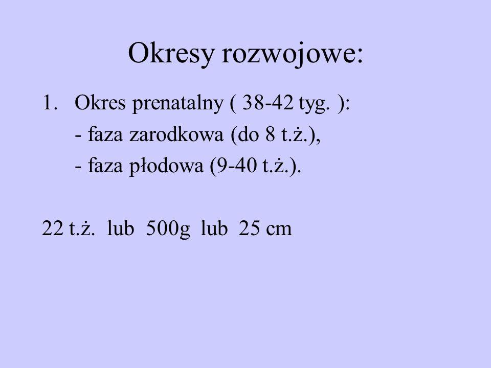 Okresy rozwojowe: 1.Okres prenatalny ( 38-42 tyg. ): - faza zarodkowa (do 8 t.ż.), - faza płodowa (9-40 t.ż.). 22 t.ż. lub 500g lub 25 cm