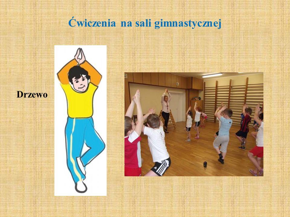 Ćwiczenia na sali gimnastycznej Drzewo