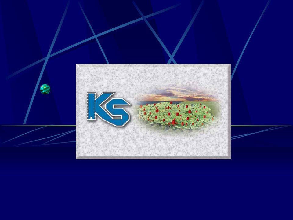 Prezentacja Rozwiązań Serwisowych Internetowy Serwis Aptek ISAKS