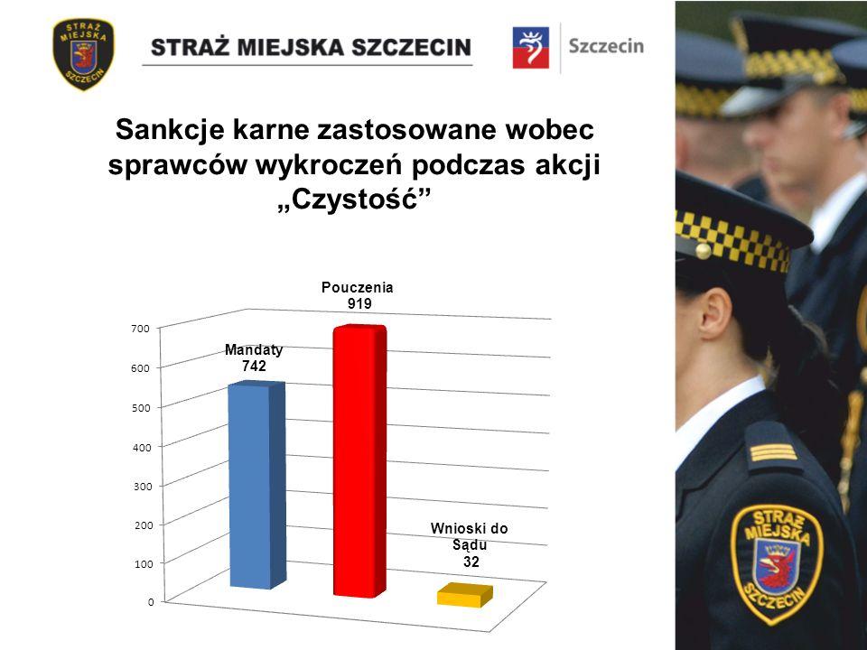Sankcje karne zastosowane wobec sprawców wykroczeń podczas akcji Czystość
