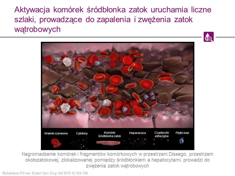Aktywacja komórek śródbłonka zatok uruchamia liczne szlaki, prowadzące do zapalenia i zwężenia zatok wątrobowych Richardson PG red. Expert Opin Drug S