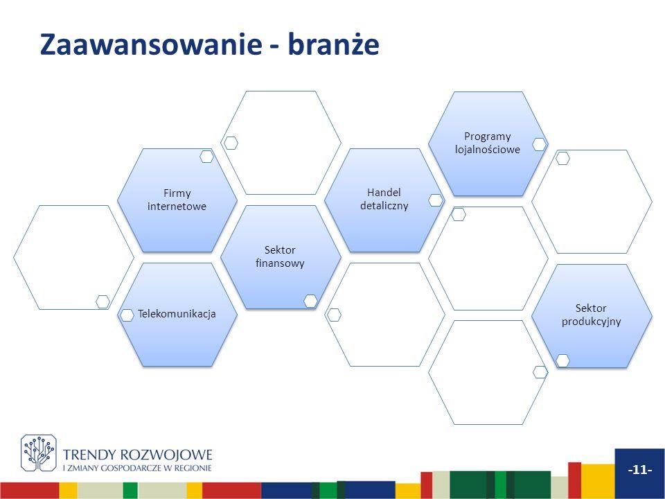 Zaawansowanie - branże -11- Telekomunikacja Sektor finansowy Firmy internetowe Handel detaliczny Programy lojalnościowe Sektor produkcyjny