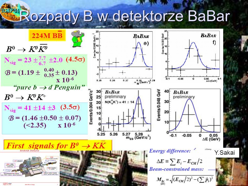19 Rozpady B w detektorze BaBar Y.Sakai