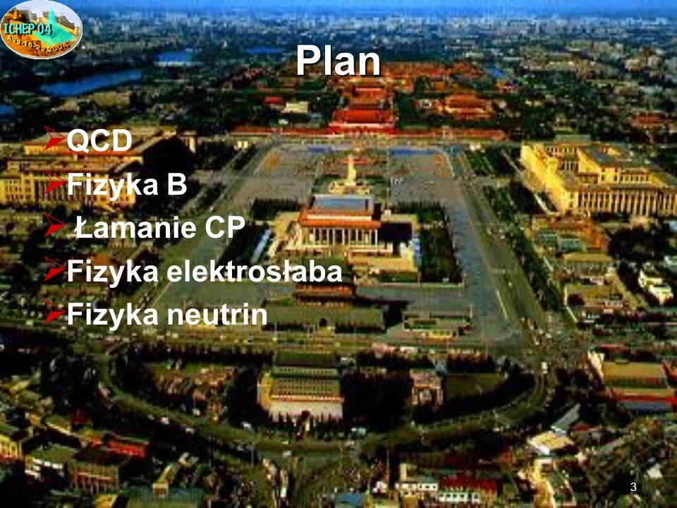 3 Plan QCD Fizyka B Łamanie CP Fizyka elektrosłaba Fizyka neutrin