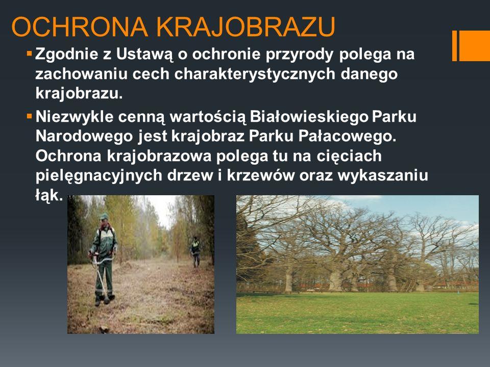 OCHRONA KRAJOBRAZU Zgodnie z Ustawą o ochronie przyrody polega na zachowaniu cech charakterystycznych danego krajobrazu. Niezwykle cenną wartością Bia