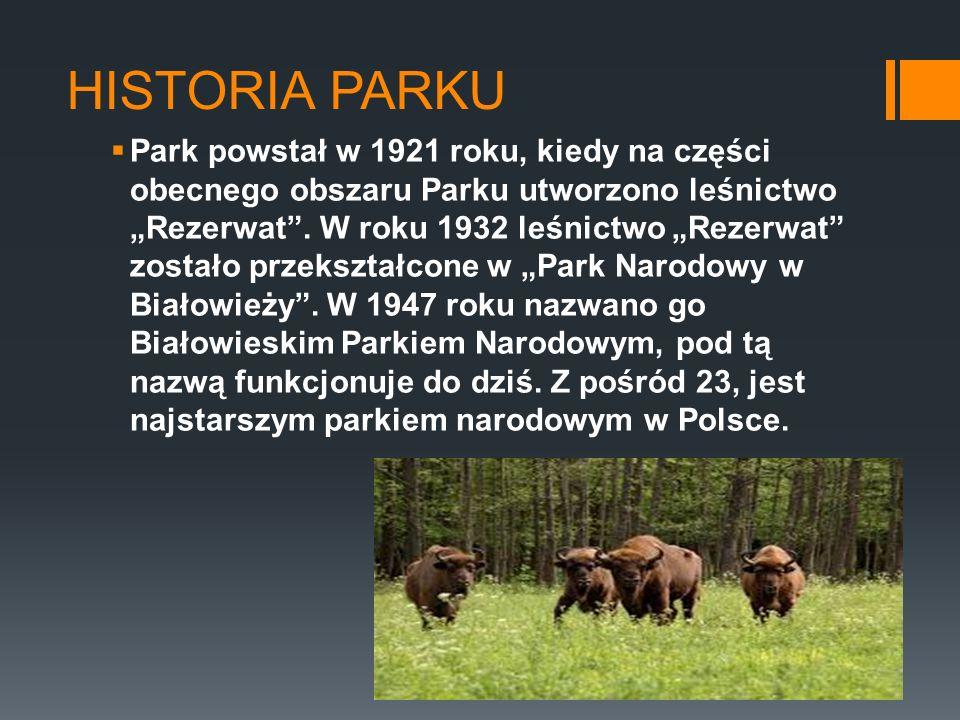 HISTORIA PARKU Park powstał w 1921 roku, kiedy na części obecnego obszaru Parku utworzono leśnictwo Rezerwat. W roku 1932 leśnictwo Rezerwat zostało p