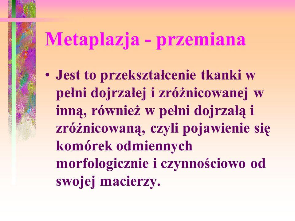 Metaplazja - przemiana Jest to przekształcenie tkanki w pełni dojrzałej i zróżnicowanej w inną, również w pełni dojrzałą i zróżnicowaną, czyli pojawie