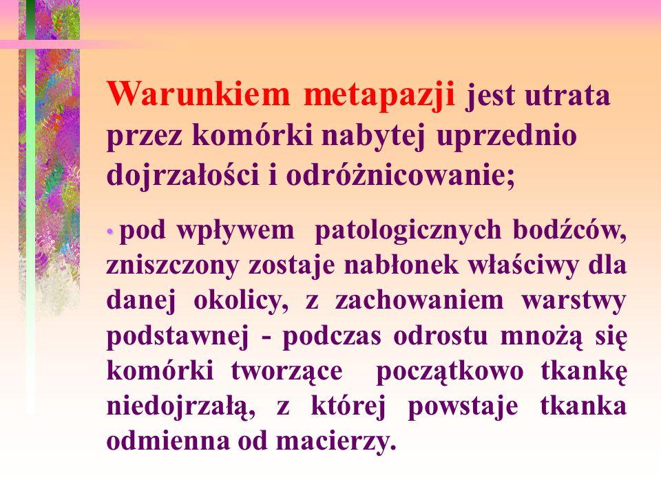 Warunkiem metapazji jest utrata przez komórki nabytej uprzednio dojrzałości i odróżnicowanie; pod wpływem patologicznych bodźców, zniszczony zostaje n