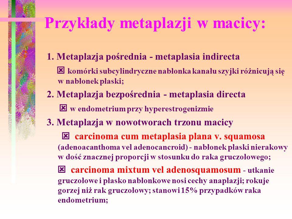 Przykłady metaplazji w macicy: 1. Metaplazja pośrednia - metaplasia indirecta komórki subcylindryczne nabłonka kanału szyjki różnicują się w nabłonek