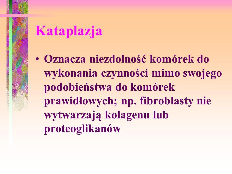 Kataplazja Oznacza niezdolność komórek do wykonania czynności mimo swojego podobieństwa do komórek prawidłowych; np. fibroblasty nie wytwarzają kolage