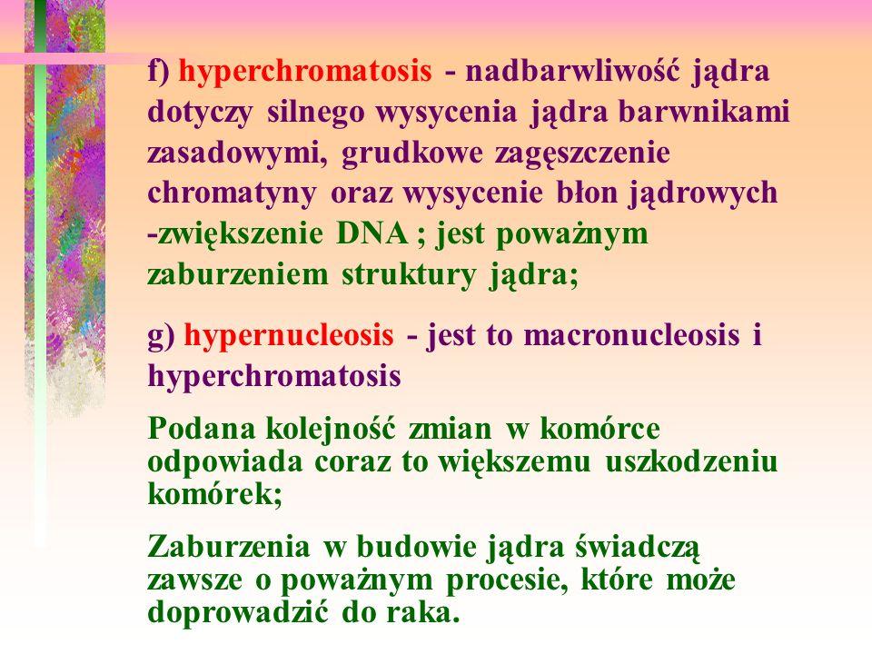 f) hyperchromatosis - nadbarwliwość jądra dotyczy silnego wysycenia jądra barwnikami zasadowymi, grudkowe zagęszczenie chromatyny oraz wysycenie błon