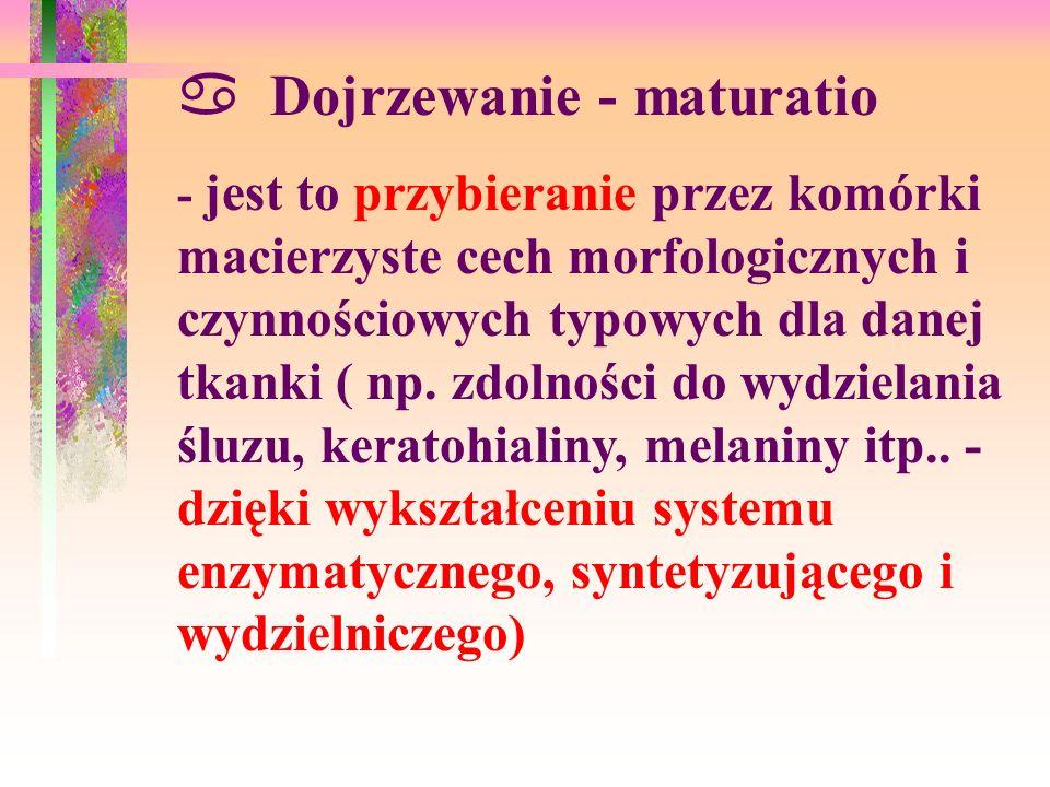 Dojrzewanie - maturatio - jest to przybieranie przez komórki macierzyste cech morfologicznych i czynnościowych typowych dla danej tkanki ( np.