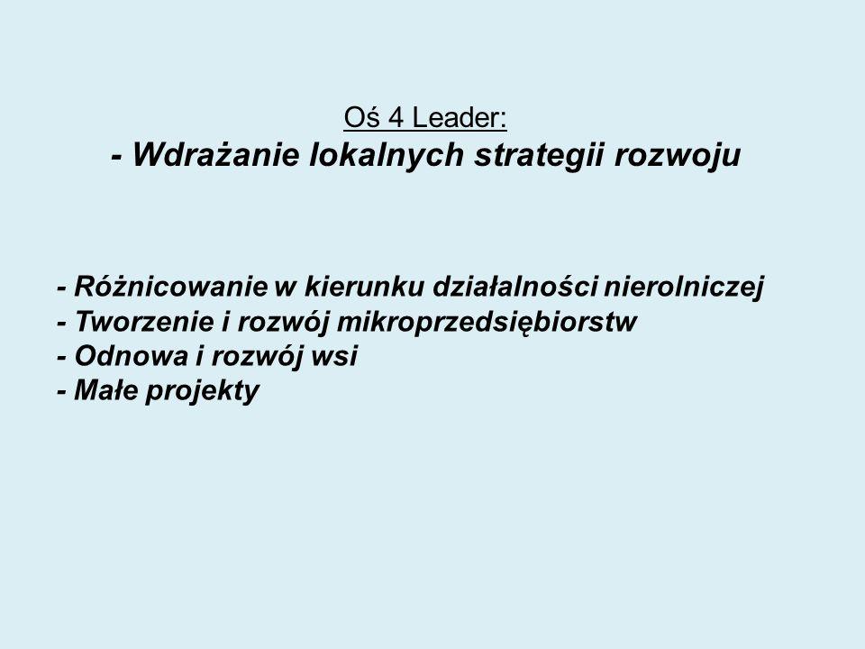 Oś 4 Leader: - Wdrażanie lokalnych strategii rozwoju - Różnicowanie w kierunku działalności nierolniczej - Tworzenie i rozwój mikroprzedsiębiorstw - Odnowa i rozwój wsi - Małe projekty