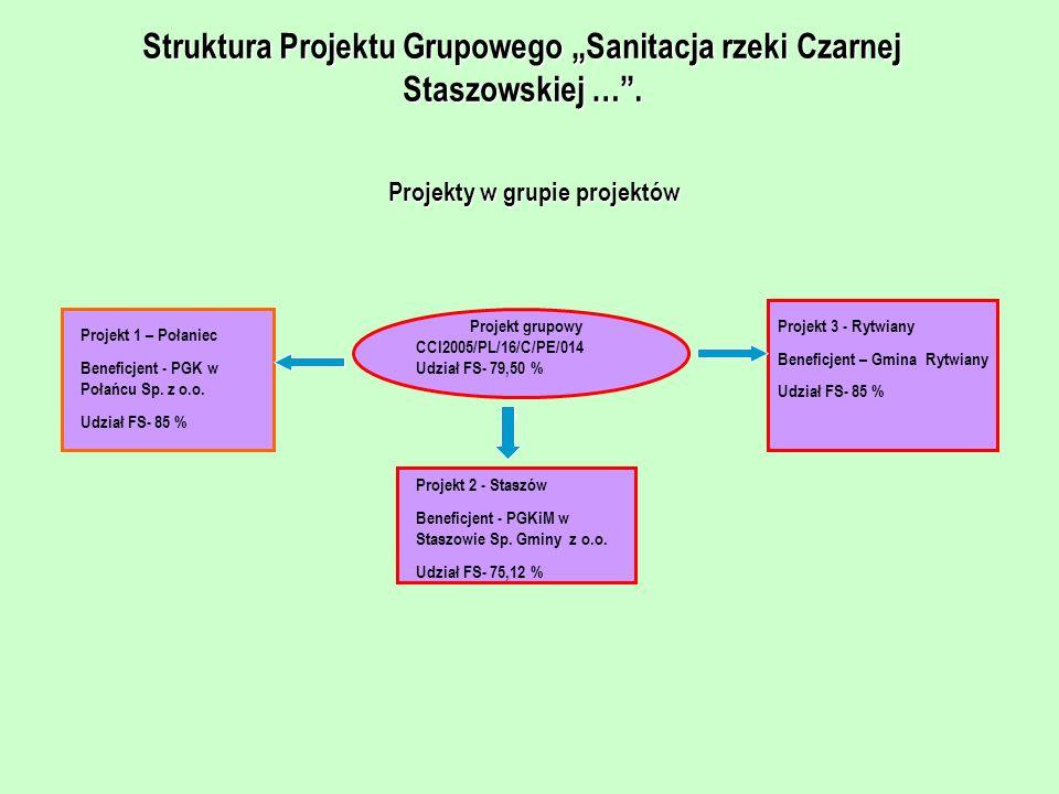 Struktura Projektu Grupowego Sanitacja rzeki Czarnej Staszowskiej …. Projekty w grupie projektów Projekt grupowy CCI2005/PL/16/C/PE/014 Udział FS- 79,