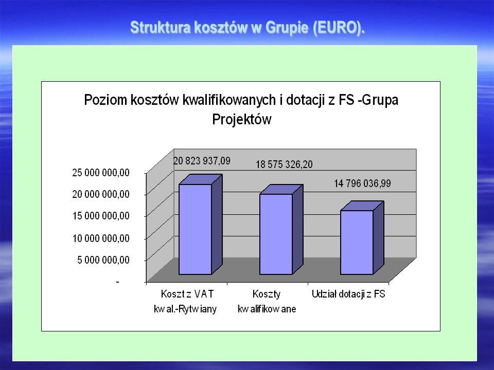 Struktura kosztów w Grupie (EURO).