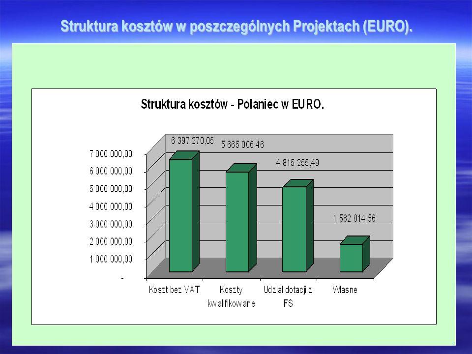 Struktura kosztów w poszczególnych Projektach (EURO).