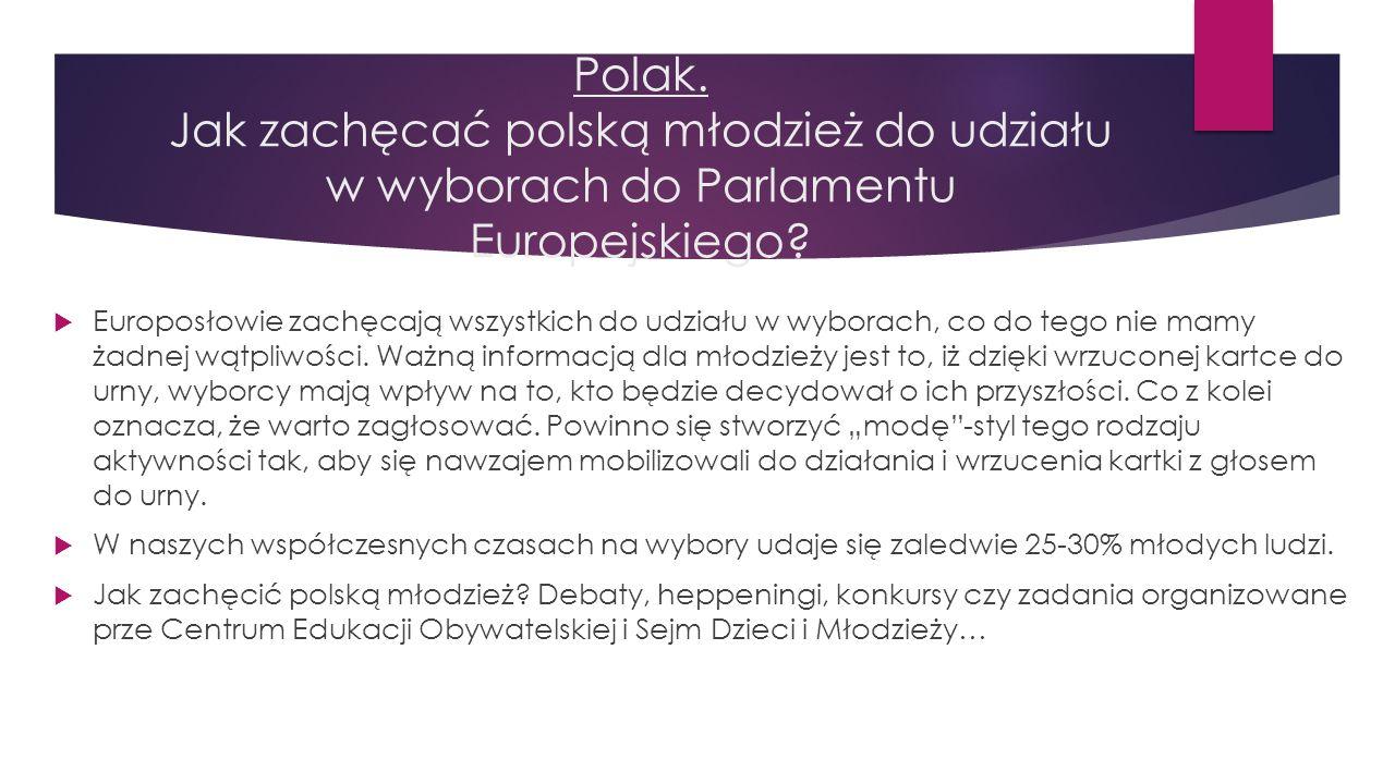 Polak. Jak zachęcać polską młodzież do udziału w wyborach do Parlamentu Europejskiego?