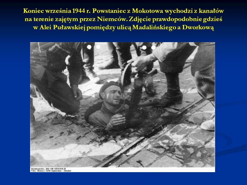 Koniec września 1944 r. Powstaniec z Mokotowa wychodzi z kanałów na terenie zajętym przez Niemców. Zdjęcie prawdopodobnie gdzieś w Alei Puławskiej pom