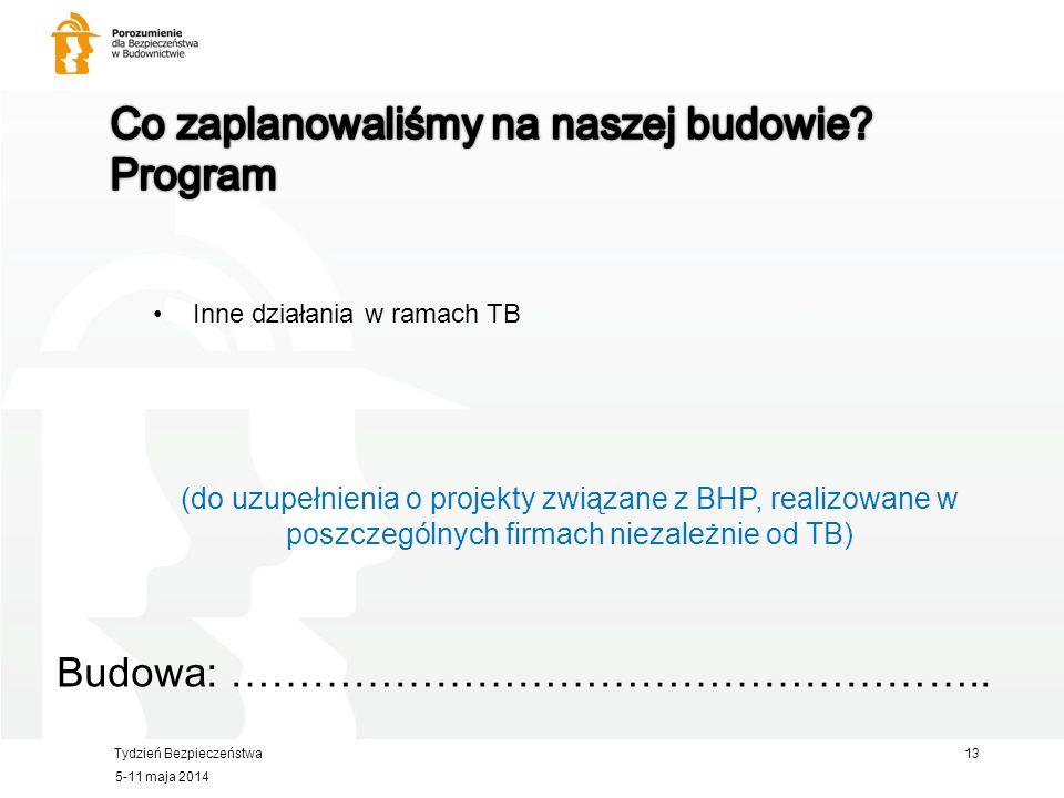 Tydzień Bezpieczeństwa Inne działania w ramach TB Budowa: ………………………………………………..