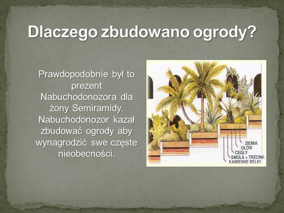 Prawdopodobnie był to prezent Nabuchodonozora dla żony Semiramidy. Nabuchodonozor kazał zbudować ogrody aby wynagrodzić swe częste nieobecności.