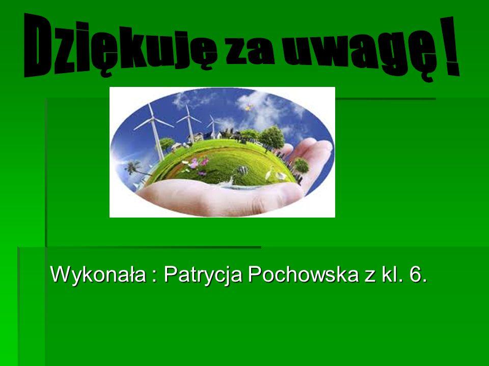 Wykonała : Patrycja Pochowska z kl. 6.