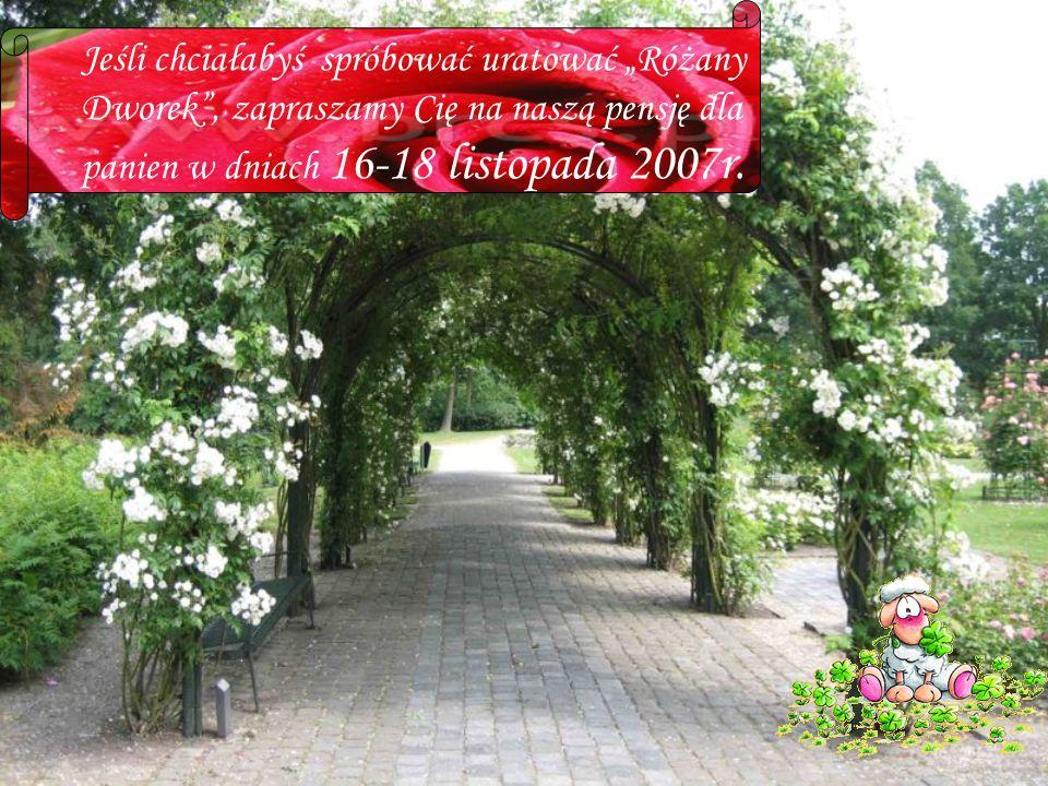 Jeśli chciałabyś spróbować uratować Różany Dworek, zapraszamy Cię na naszą pensję dla panien w dniach 16-18 listopada 2007r.