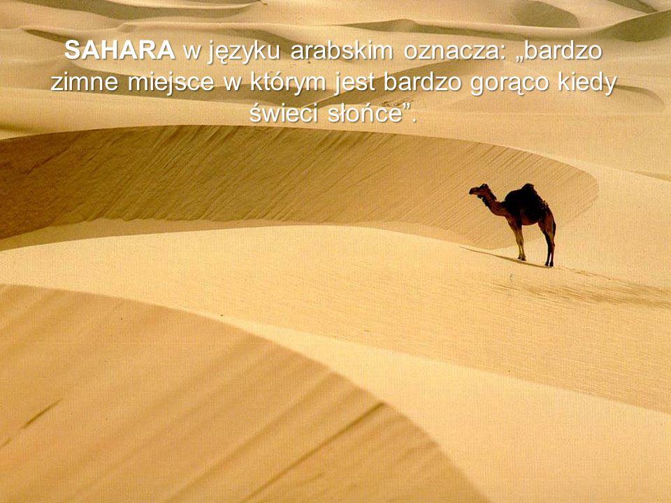SAHARA w języku arabskim oznacza: bardzo zimne miejsce w którym jest bardzo gorąco kiedy świeci słońce.