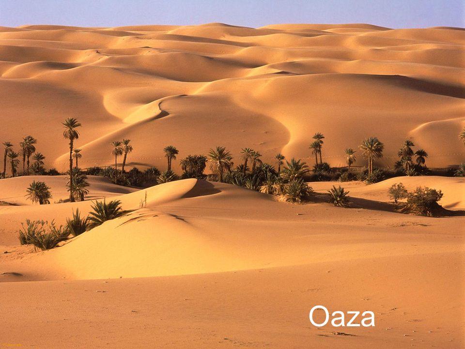 Libia jest czwartym co do wielkości krajem Afryki. Linia brzegowa wynosi 1770 km