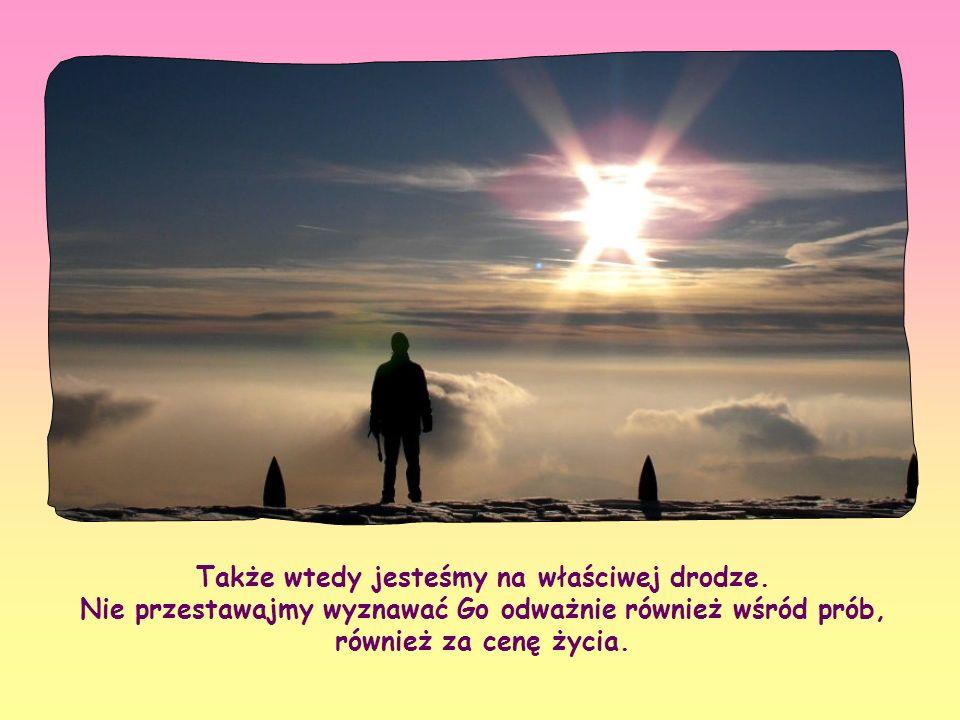 Kiedy indziej znów możemy być źle zrozumiani, napotkać sprzeciw, stać się przedmiotem drwin, niechęci czy prześladowania. Jezus zapowiedział nam równi