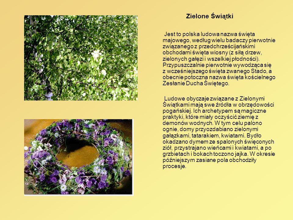 Zielone Świątki Jest to polska ludowa nazwa święta majowego, według wielu badaczy pierwotnie związanego z przedchrześcijańskimi obchodami święta wiosn