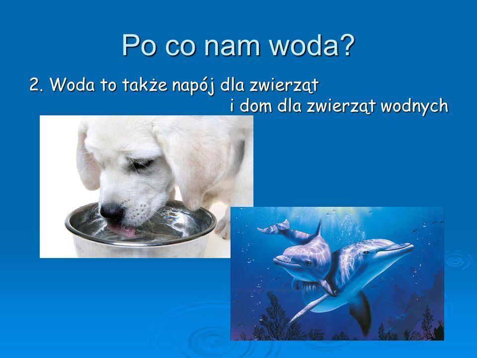 Po co nam woda? 2. Woda to także napój dla zwierząt i dom dla zwierząt wodnych