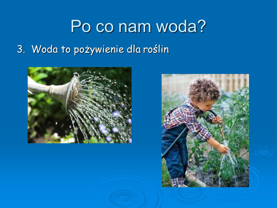Po co nam woda? 3. Woda to pożywienie dla roślin