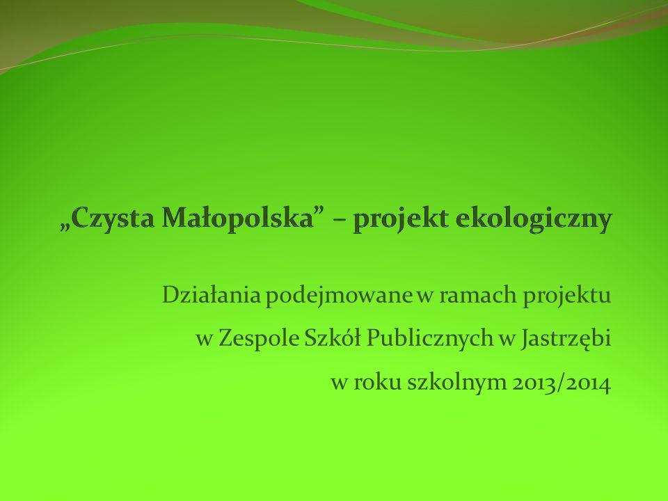 Działania podejmowane w ramach projektu w Zespole Szkół Publicznych w Jastrzębi w roku szkolnym 2013/2014