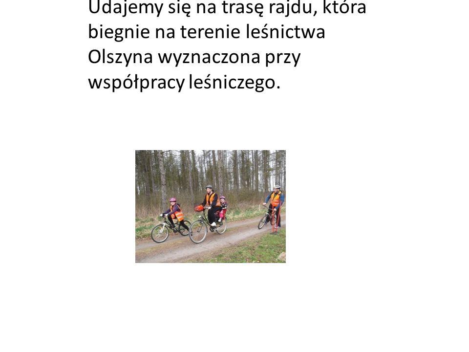 Udajemy się na trasę rajdu, która biegnie na terenie leśnictwa Olszyna wyznaczona przy współpracy leśniczego.