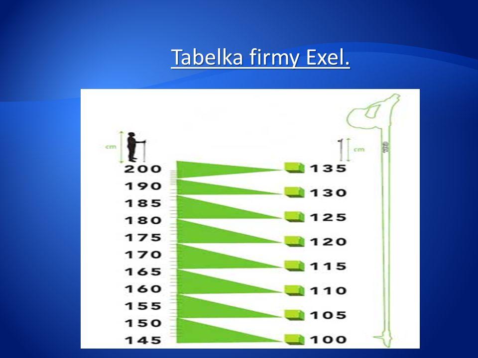 Tabelka firmy Exel.
