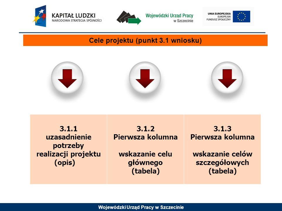 Wojewódzki Urząd Pracy w Szczecinie Cele projektu (punkt 3.1 wniosku) 3.1.1 uzasadnienie potrzeby realizacji projektu (opis) 3.1.2 Pierwsza kolumna wskazanie celu głównego (tabela) 3.1.3 Pierwsza kolumna wskazanie celów szczegółowych (tabela)