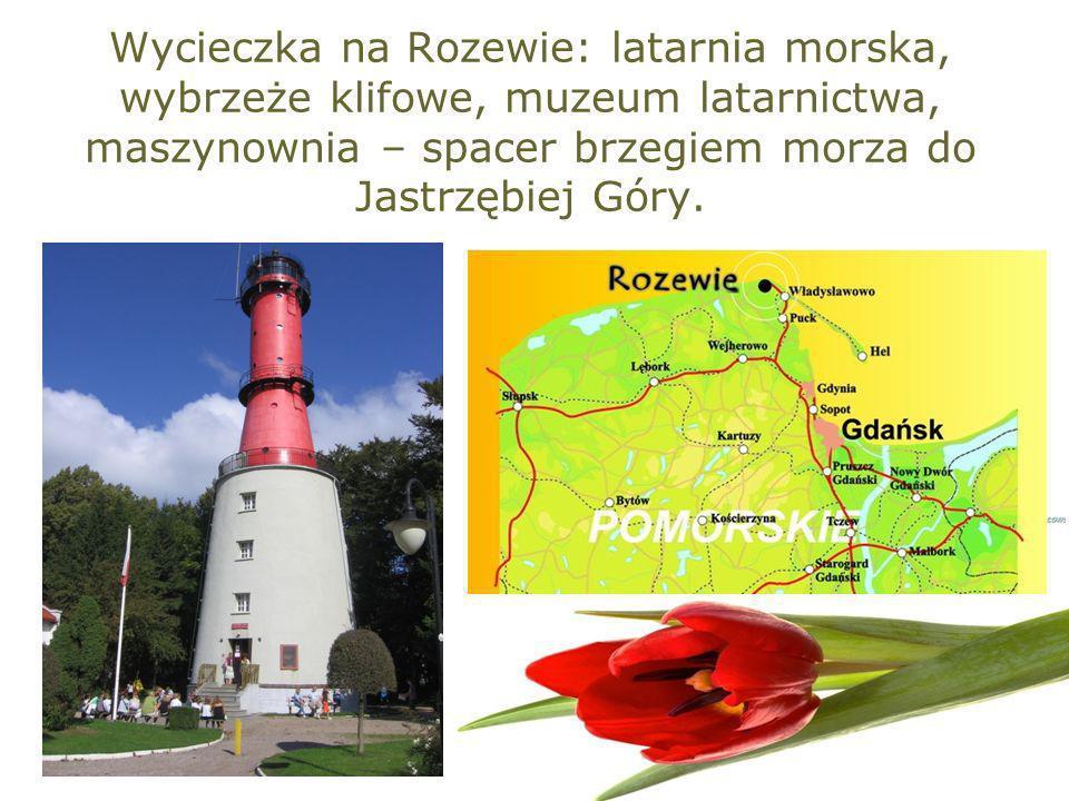 Wycieczka na Rozewie: latarnia morska, wybrzeże klifowe, muzeum latarnictwa, maszynownia – spacer brzegiem morza do Jastrzębiej Góry.