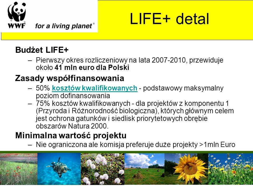 Budżet LIFE+ –Pierwszy okres rozliczeniowy na lata 2007-2010, przewiduje około 41 mln euro dla Polski Zasady współfinansowania –50% kosztów kwalifikow