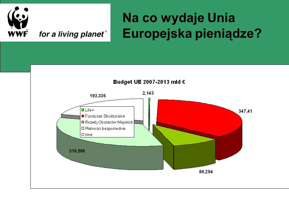 Na co wydaje Unia Europejska pieniądze?