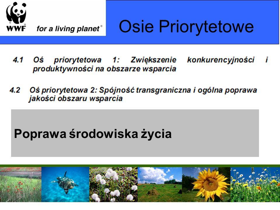 Osie Priorytetowe Poprawa środowiska życia