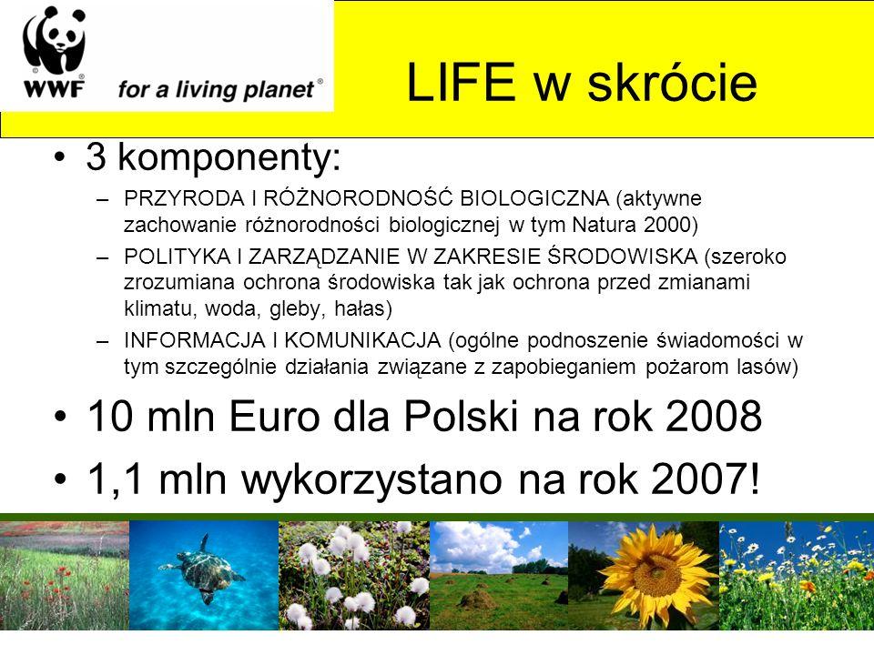 LIFE w skrócie 3 komponenty: –PRZYRODA I RÓŻNORODNOŚĆ BIOLOGICZNA (aktywne zachowanie różnorodności biologicznej w tym Natura 2000) –POLITYKA I ZARZĄD