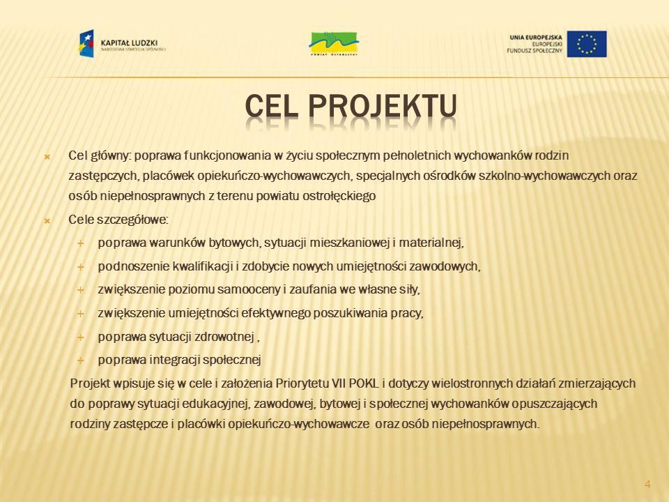 Cel główny: poprawa funkcjonowania w życiu społecznym pełnoletnich wychowanków rodzin zastępczych, placówek opiekuńczo-wychowawczych, specjalnych ośrodków szkolno-wychowawczych oraz osób niepełnosprawnych z terenu powiatu ostrołęckiego Cele szczegółowe: poprawa warunków bytowych, sytuacji mieszkaniowej i materialnej, podnoszenie kwalifikacji i zdobycie nowych umiejętności zawodowych, zwiększenie poziomu samooceny i zaufania we własne siły, zwiększenie umiejętności efektywnego poszukiwania pracy, poprawa sytuacji zdrowotnej, poprawa integracji społecznej Projekt wpisuje się w cele i założenia Priorytetu VII POKL i dotyczy wielostronnych działań zmierzających do poprawy sytuacji edukacyjnej, zawodowej, bytowej i społecznej wychowanków opuszczających rodziny zastępcze i placówki opiekuńczo-wychowawcze oraz osób niepełnosprawnych.