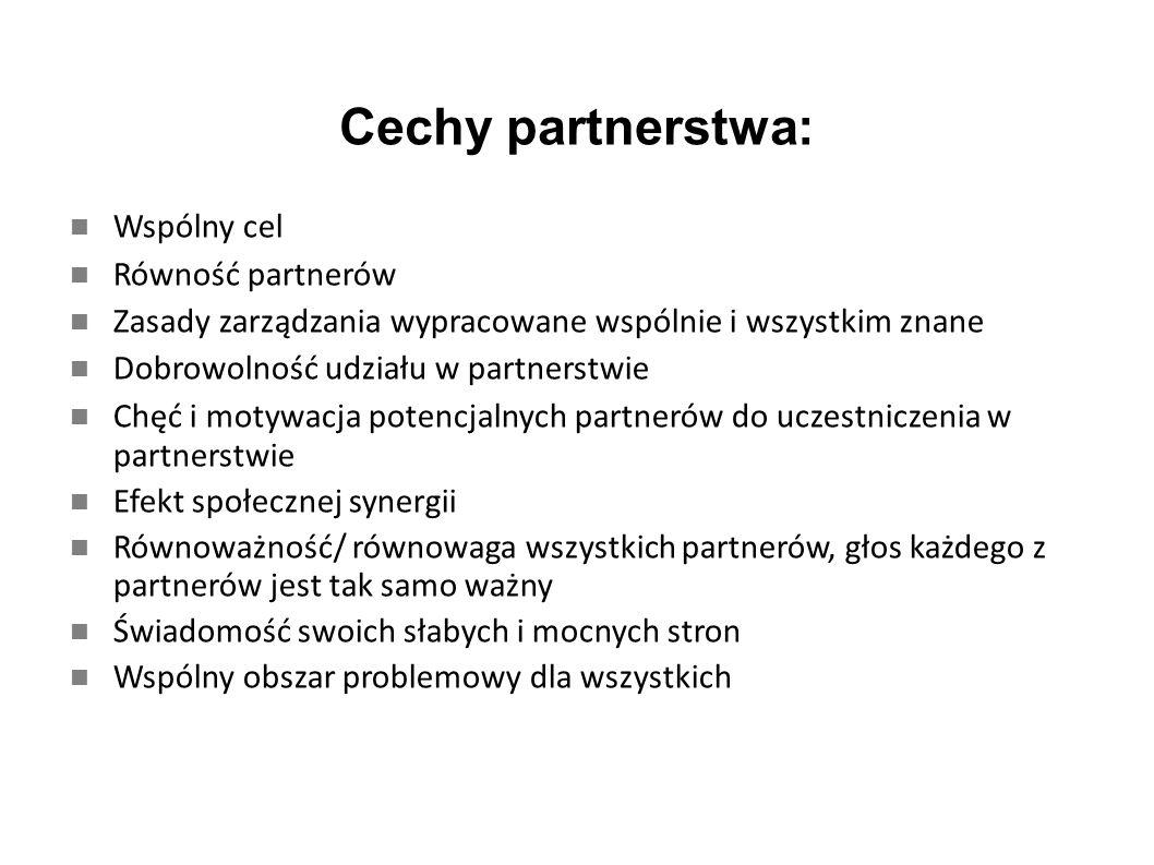 Cechy partnerstwa: Krytyczne bycie wewnątrz partnerstwa Świadomość oczekiwań partnerów – nie można kryć swoich intencji, jawność zamiarów Uzupełnianie zasobów, łączenie kapitałów Partnerstwo to proces dynamiczny, dzieje się Partnerzy są współodpowiedzialni za efekty Wspólne wartości – zaufanie, lojalność, odpowiedzialność