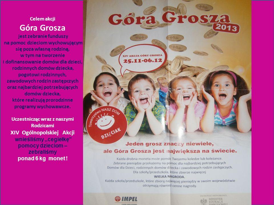 Celem akcji Góra Grosza jest zebranie funduszy na pomoc dzieciom wychowującym się poza własną rodziną, w tym na tworzenie i dofinansowanie domów dla d