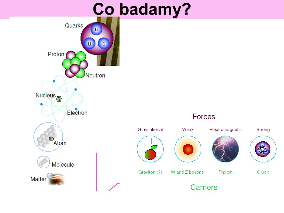 Co badamy?