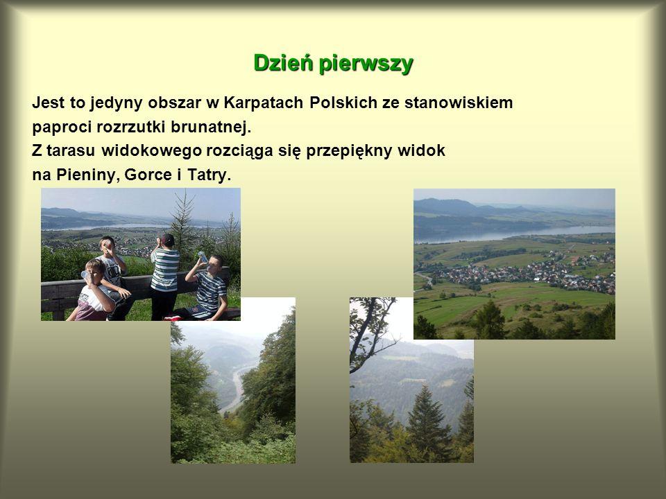 Jest to jedyny obszar w Karpatach Polskich ze stanowiskiem paproci rozrzutki brunatnej. Z tarasu widokowego rozciąga się przepiękny widok na Pieniny,